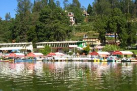 Ooty Kodaikanal Tour Packages