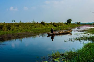 Paddy and Nest Tour in Kerala