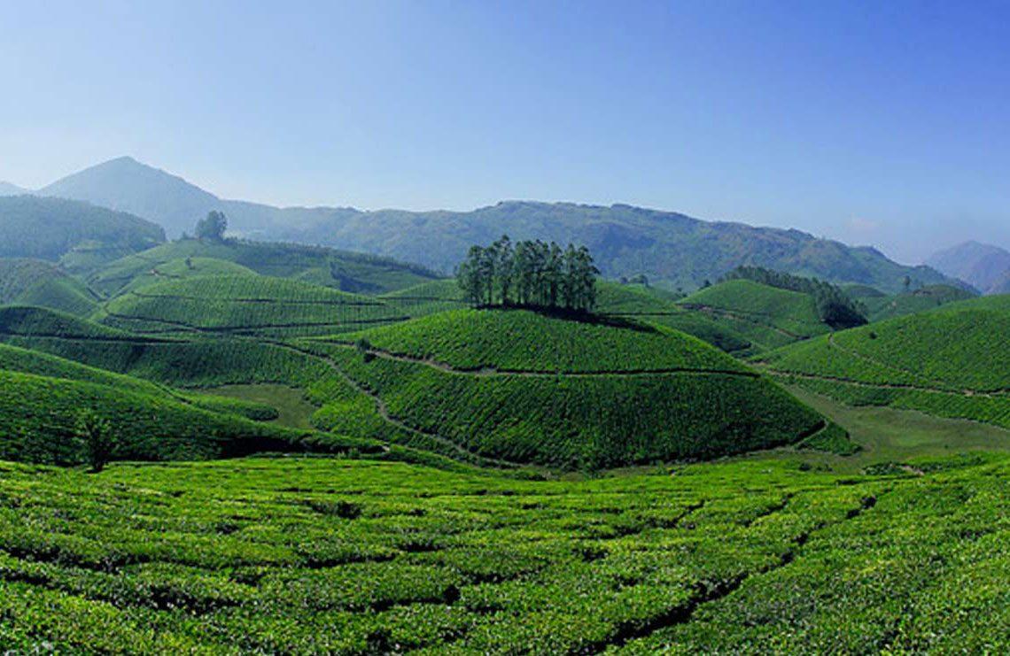 Kerala Hill Station Packages